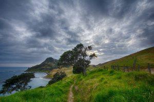 find running trails